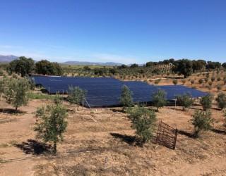 bombeo-solar-43kw-sharp-solar-Vico-Export-Solar-Energy-Cordoba