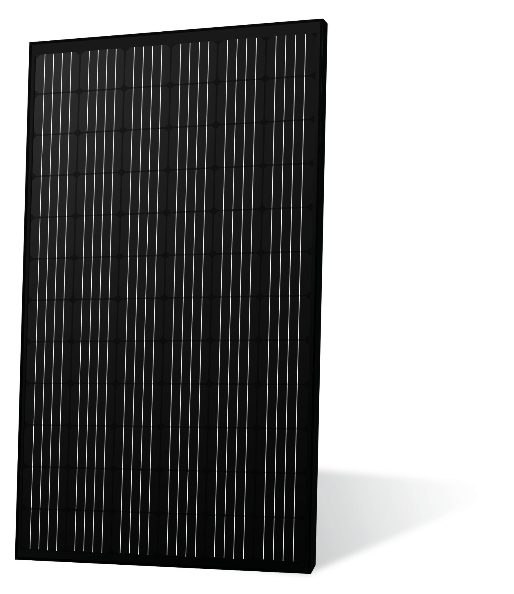 ECSolar Mono full black 325w 325M72 4BB www.vicoexport.com